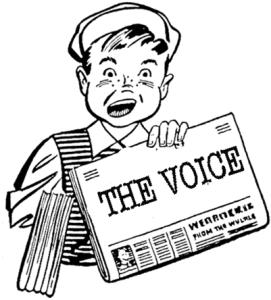 Voice-7